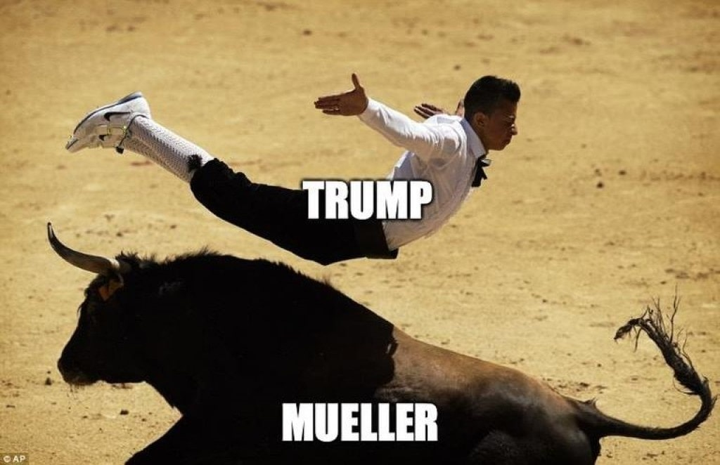 Trump, Mueller, bullfighting