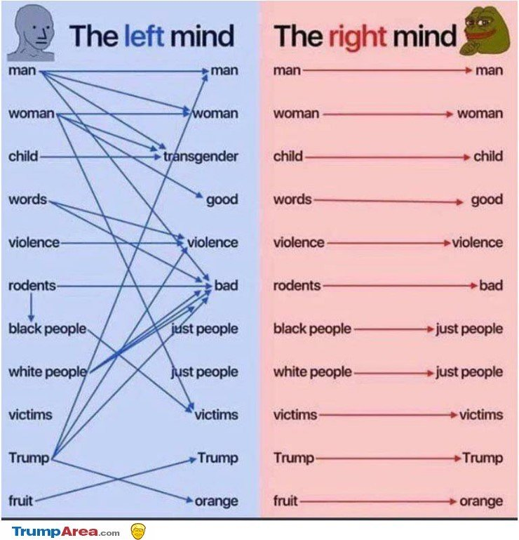 Left mind vs right mind